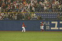 Swallows Home Run
