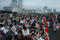 Fireworks crowd 1